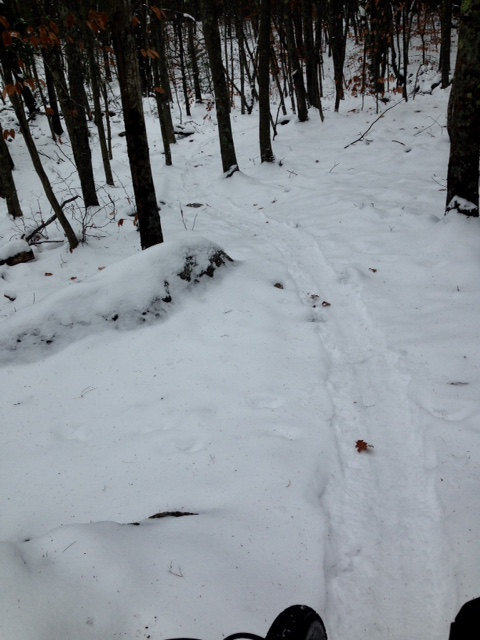 Did you ride in Massachusetts today?-image.jpeg