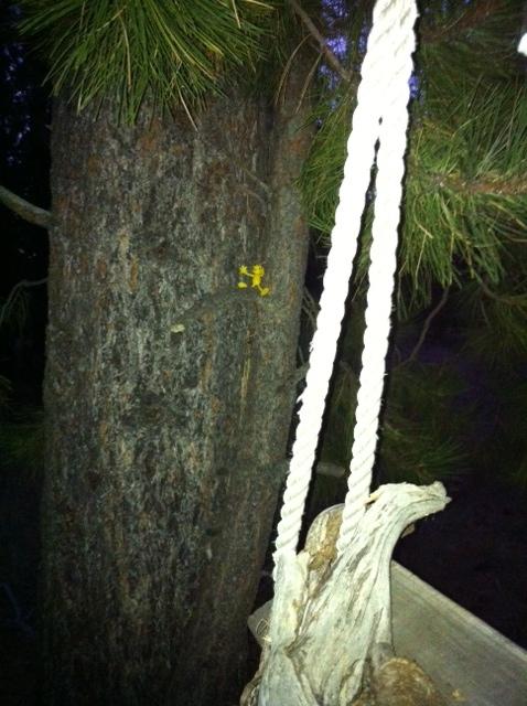Yellowman game-image.jpeg