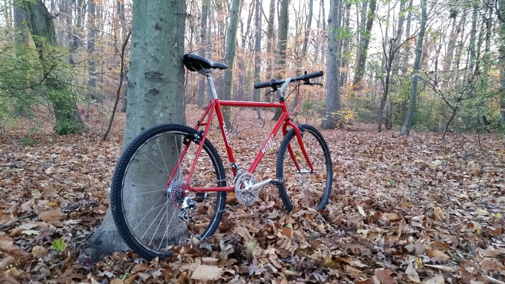 Ritchey P-series, a fan page-image.jpg