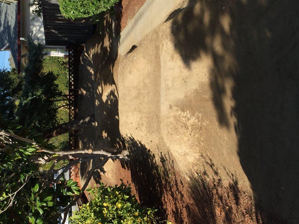 The Backyard Pump Track-image.jpg