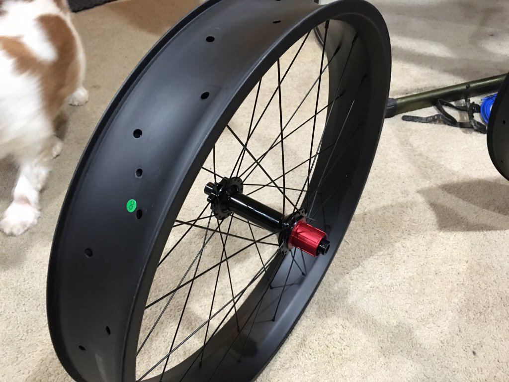What  fatbike did you Build-image.jpg