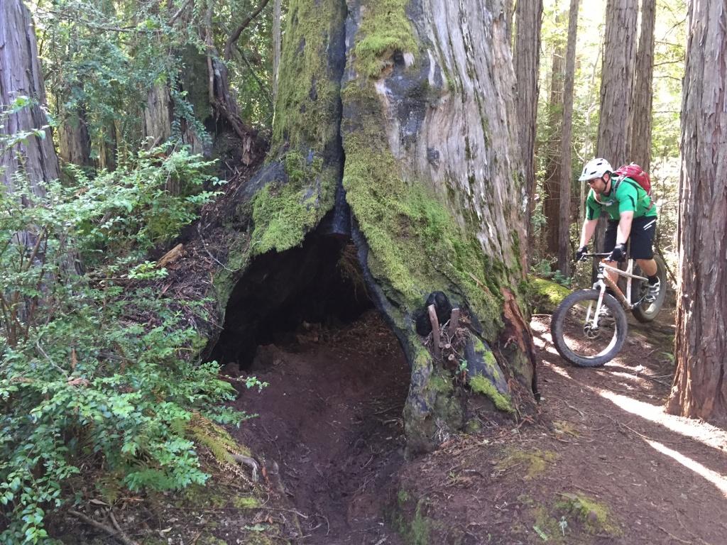On One Fat Bike Frame-image.jpg