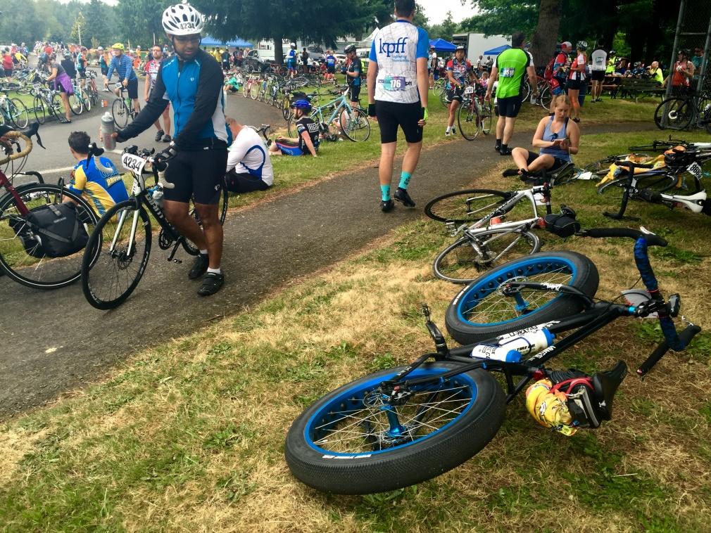 How popular are fat bikes around here?-image.jpg