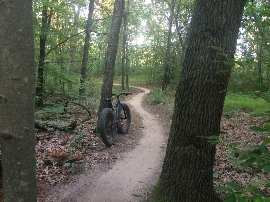 Fat Biking and health-image.jpg