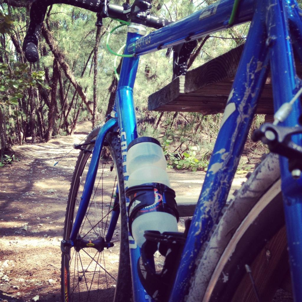Cyclocross bike for mtbing and single track riding?-image.jpg