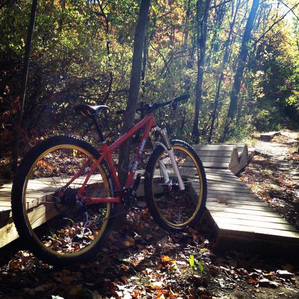 29ers In The Fall-image.jpg
