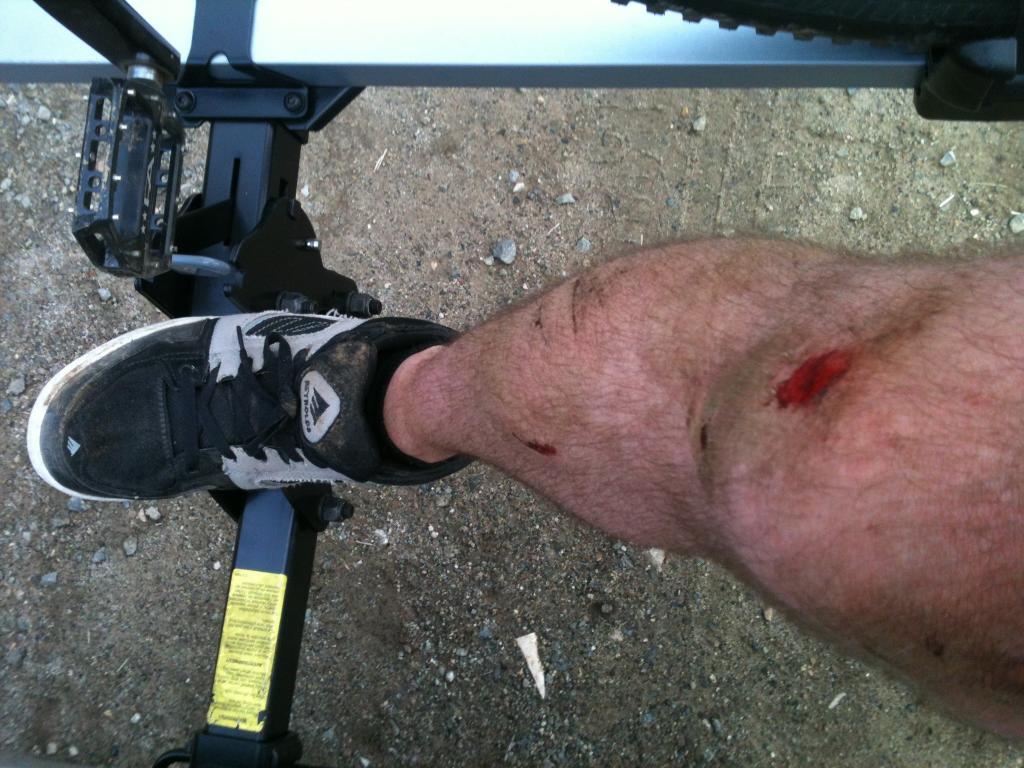 What did You do today on your mountain bike?-image.jpg