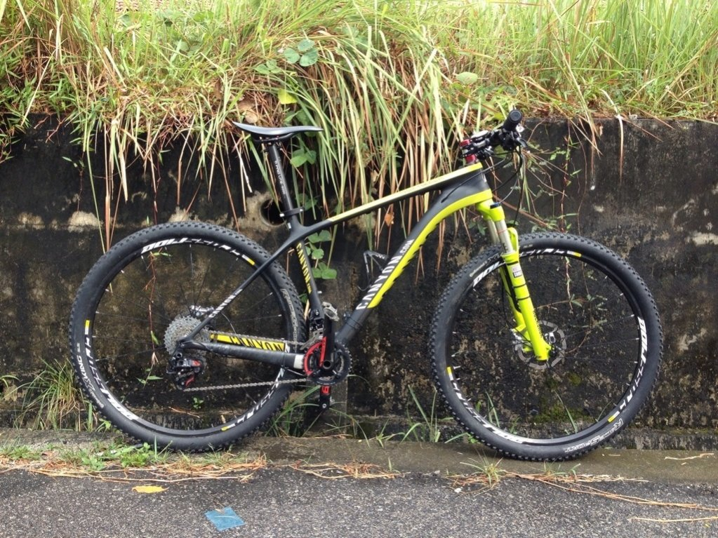 Canyon 29er for racing-image.jpg