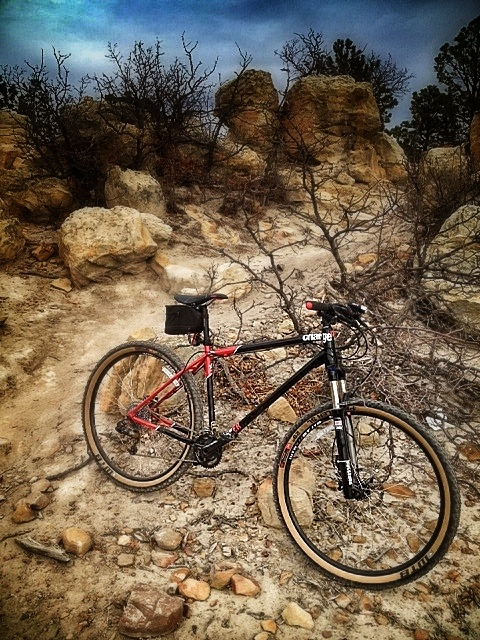 I bought a Charge Cooker HI 29er!-image.jpg