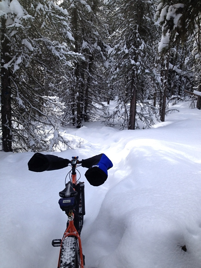 April 12 Snow Ride - For those out of snow, eat your hearts out.-image.jpg