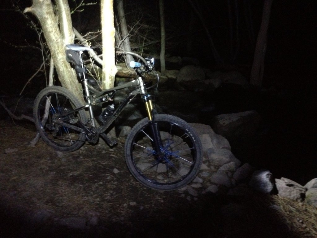 I love night riding-image.jpg