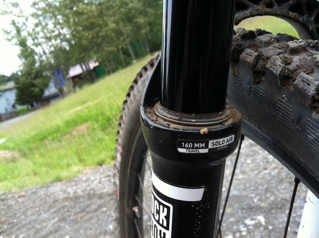 RS Pike 29er 160 Fact or Fiction?-image.jpg