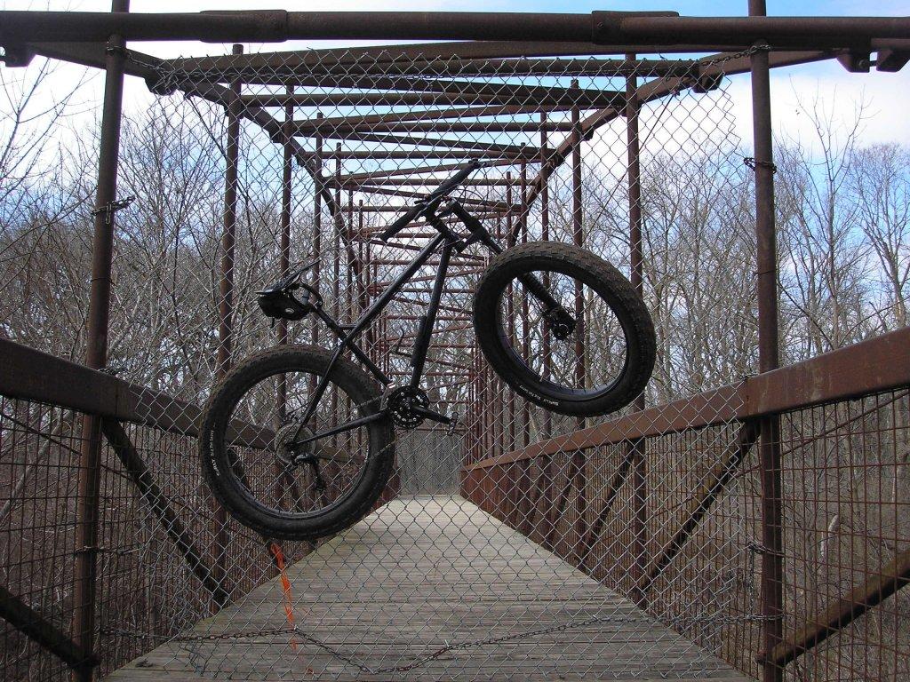 Fat Tire Bikes-image.jpg