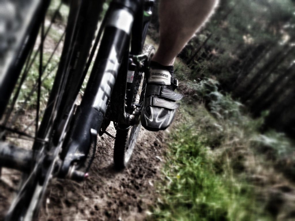 Your Best MTB Pics with the iPhone-image.jpg