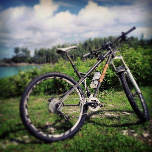 Lets see some steel 29ers!-image.jpg