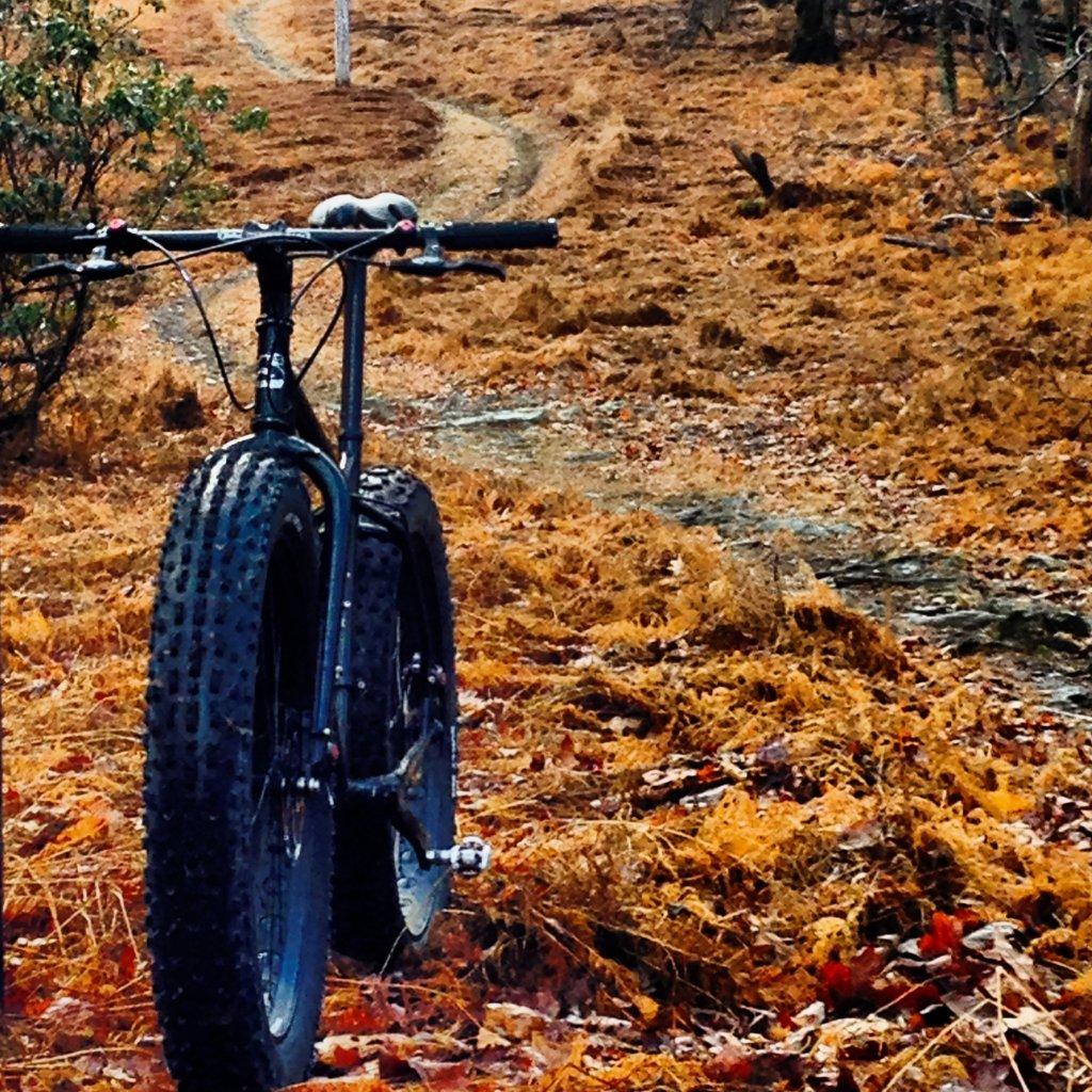 Global Fat Bike Day 2013-image.jpg