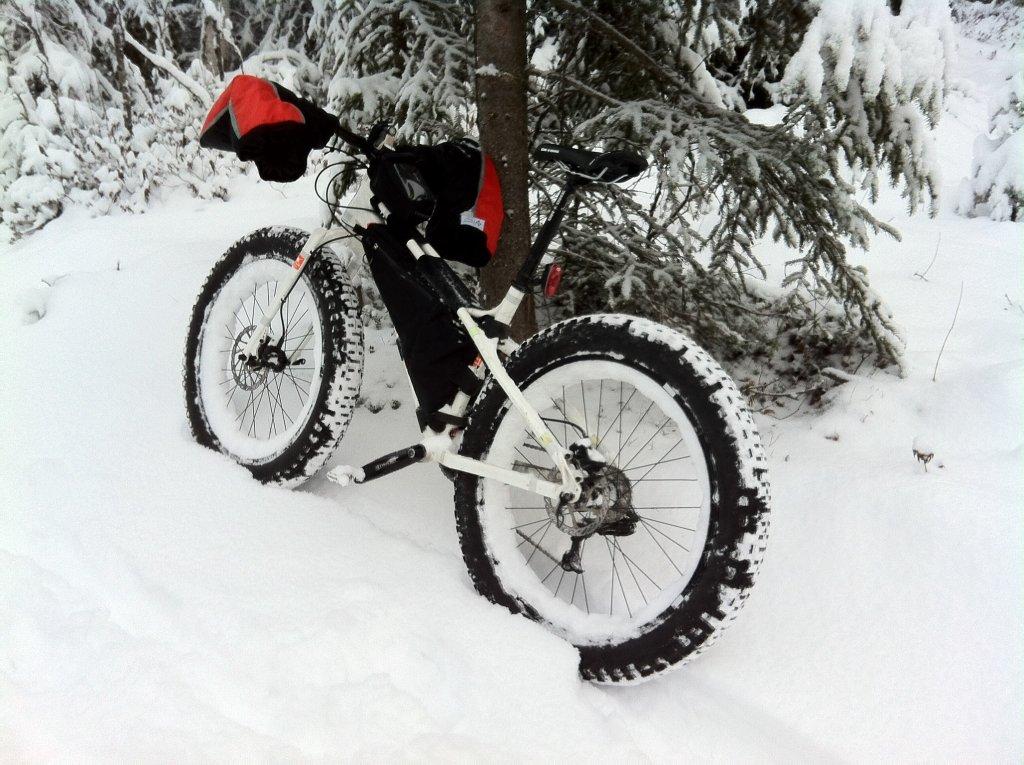 winter...-image.jpg