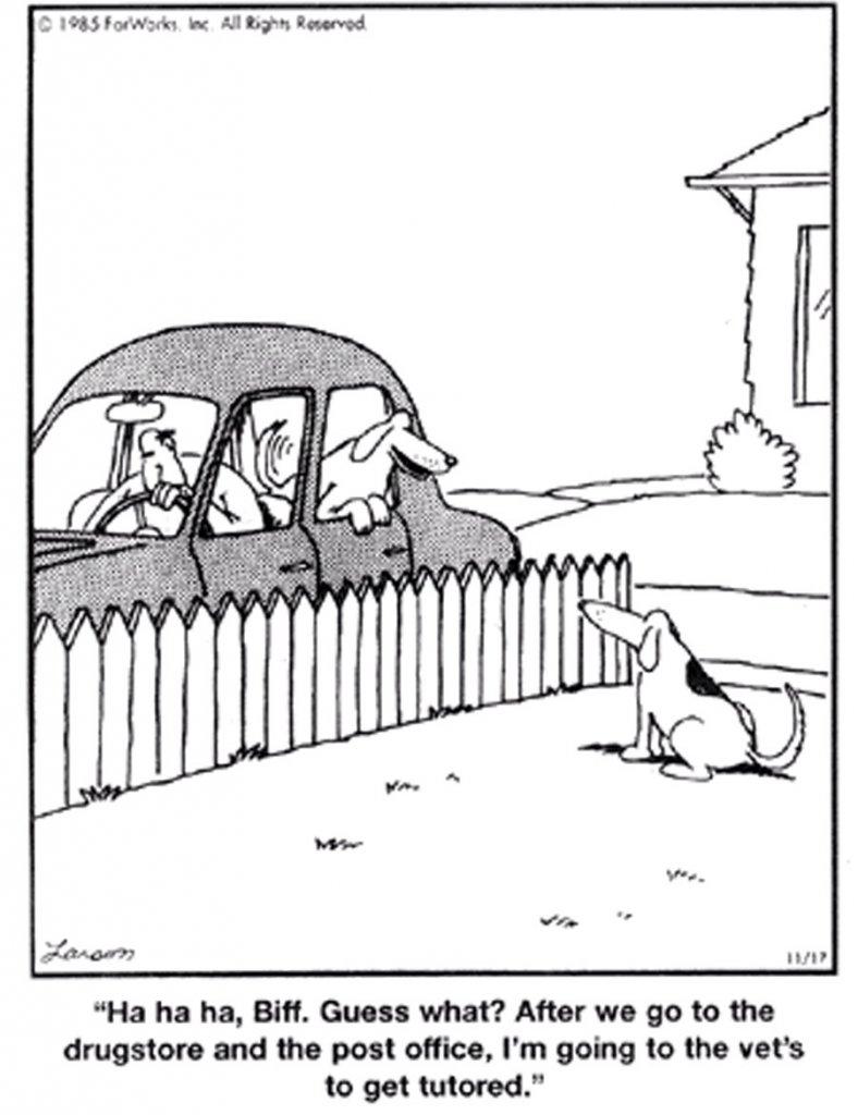 O.C. Official Daily Chuckle thread.... Comic Strip Enhanced...-image.jpg