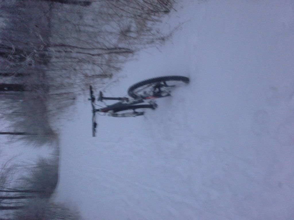 No fat bike to give me a tow-image.jpg