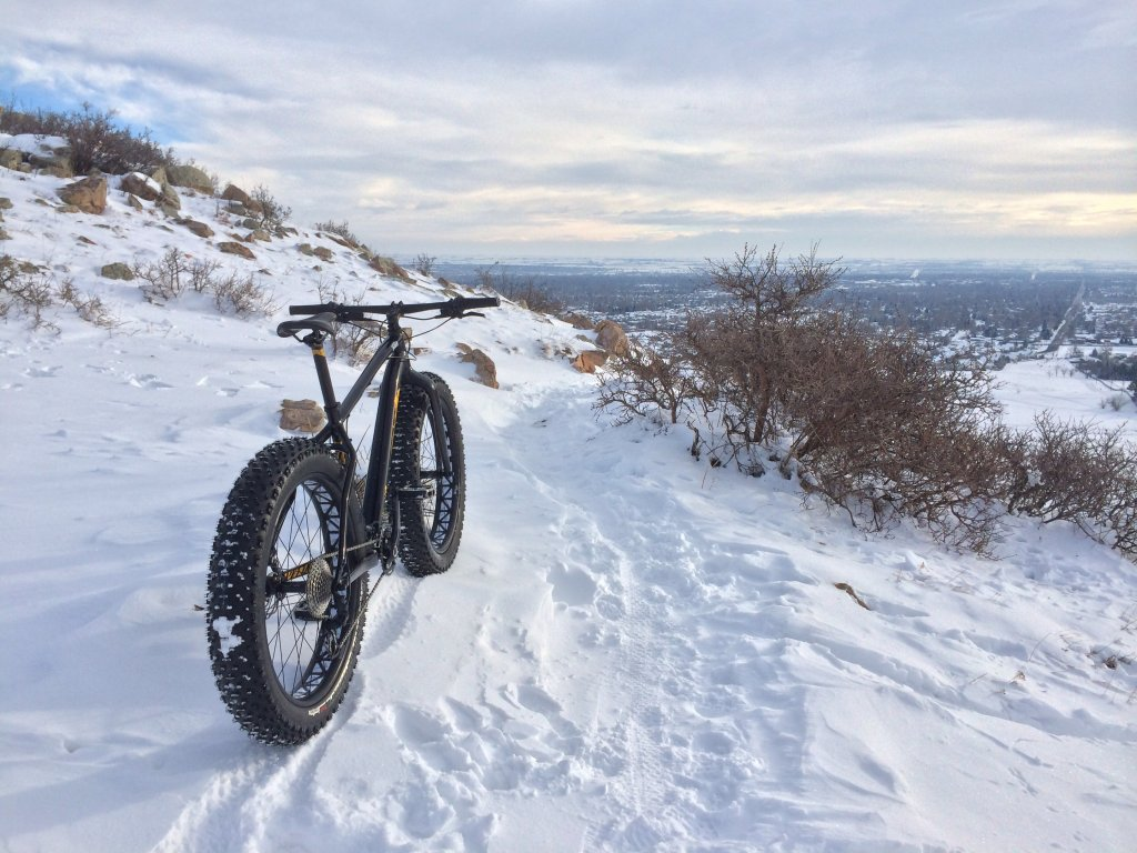 Fat in Fort Collins - Specialized Fatboy-image.jpg