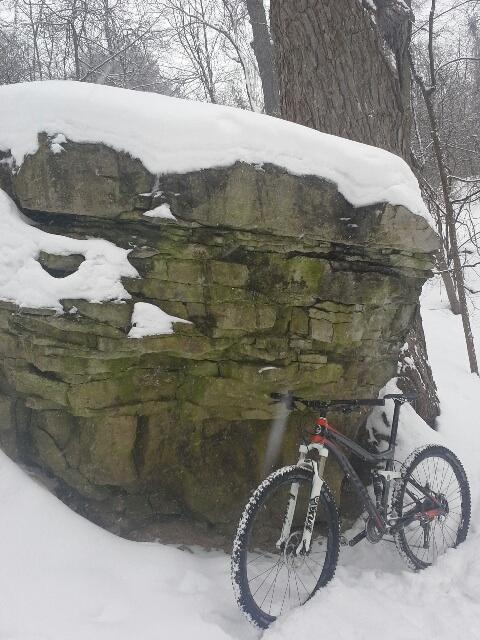 Bike Pics!-image.jpg