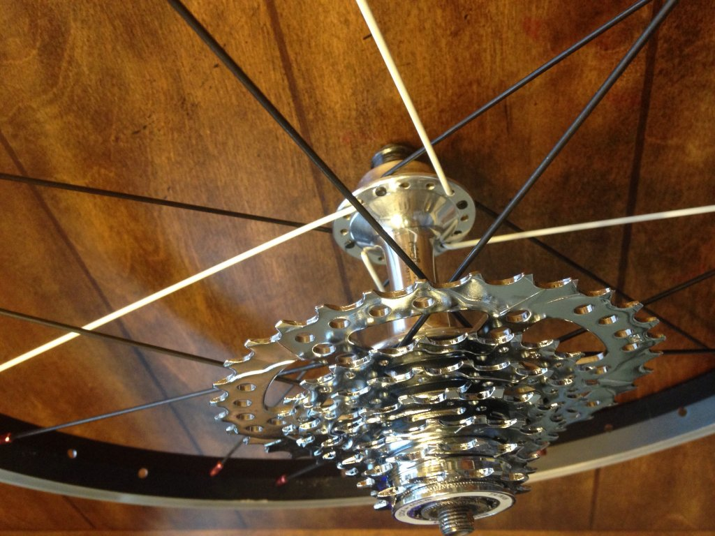 2011 Scott Contessa JR 20 Budget Build and Thoughts-image.jpg