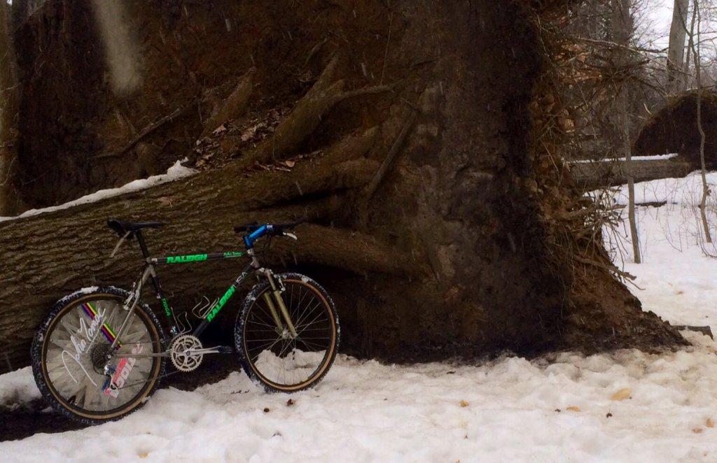 Show us your famous vintage bikes-image.jpg