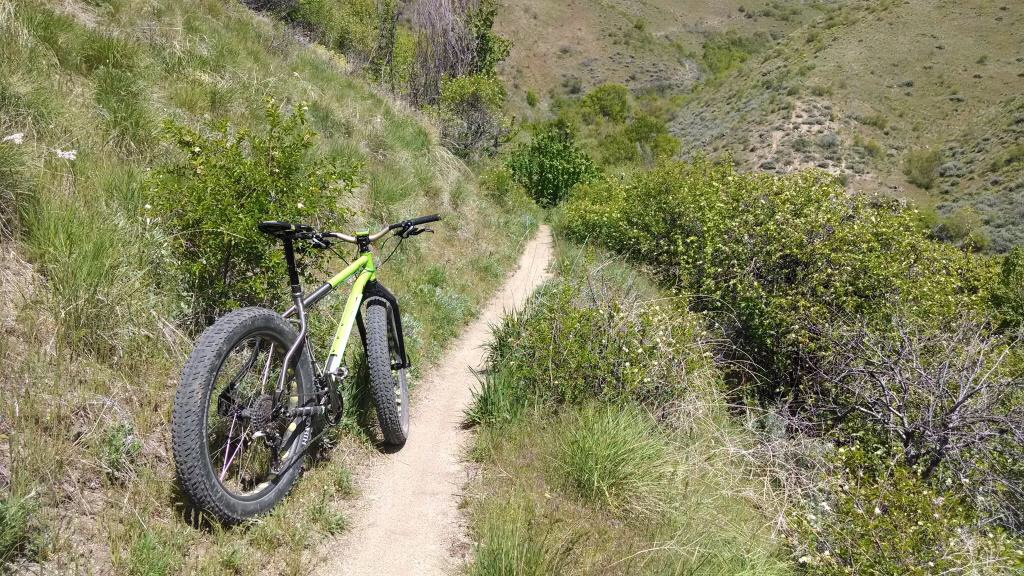 Where are the fat bikes in Boise-image.jpg