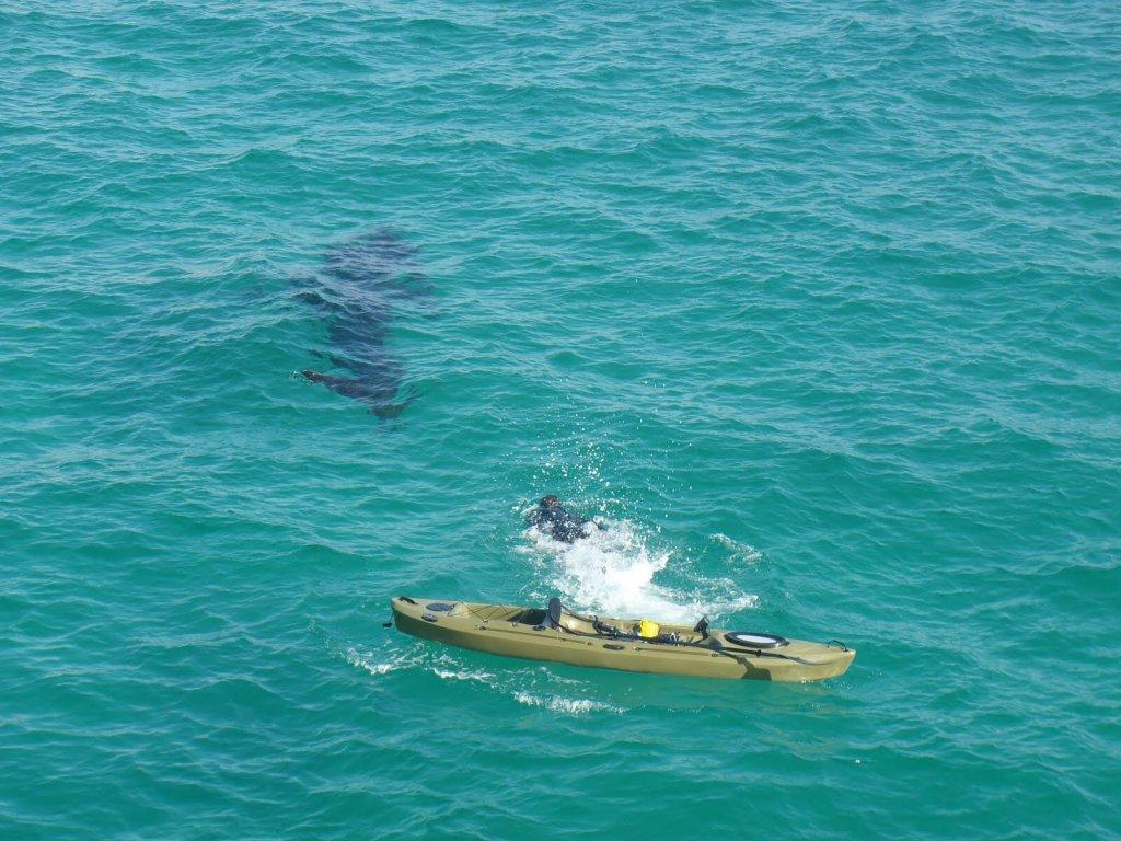 Fishing kayak newbie suggestions for Panama city fishing pier