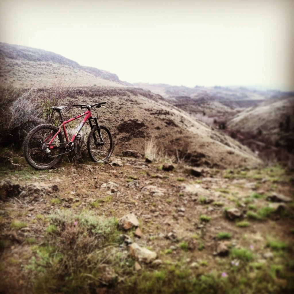 Post Your IH Hardtail Photos!-image.jpg