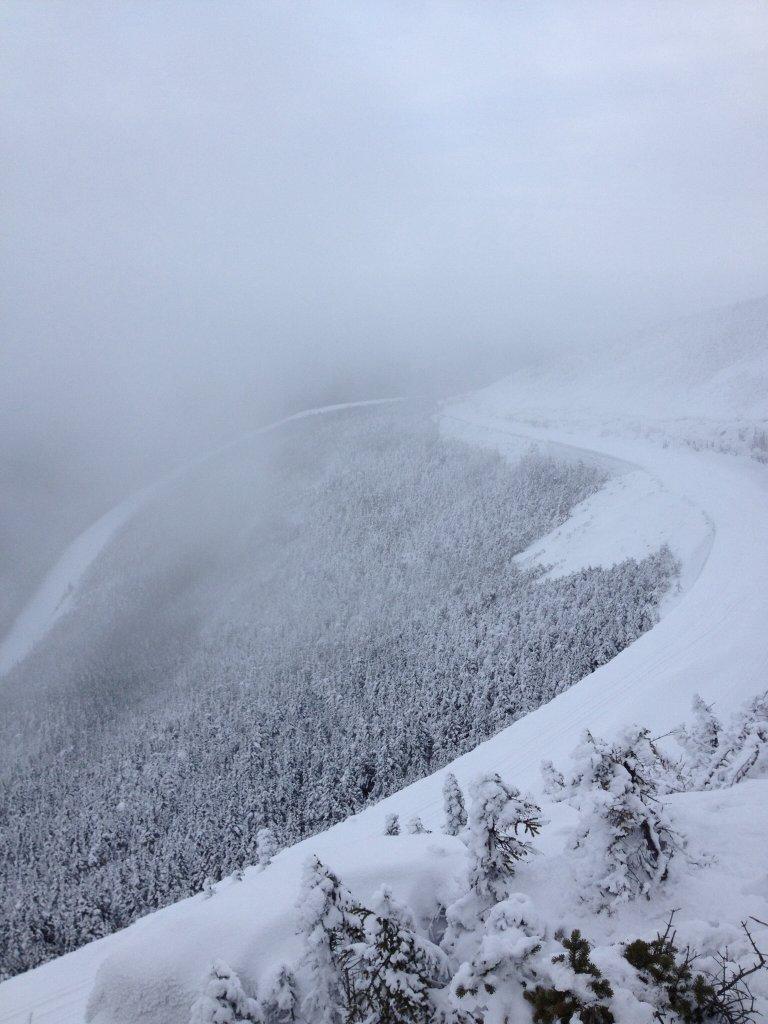 XC Skiing Anyone?-image.jpg