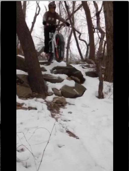 mongoose Vinson-image.jpg