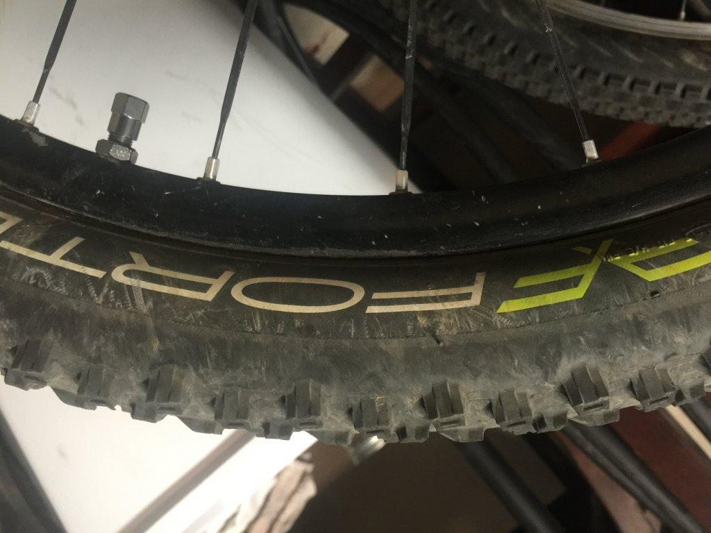 Official AZ Tire Thread-image.jpg