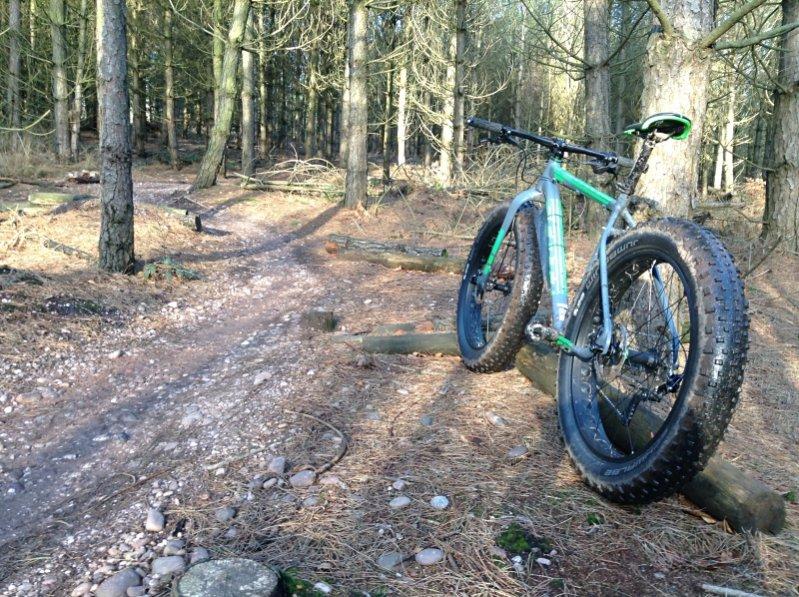 New Scott fat bike: Big Jon-image1.jpg