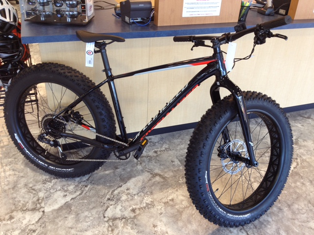 My Decision on Bike-image1.jpg
