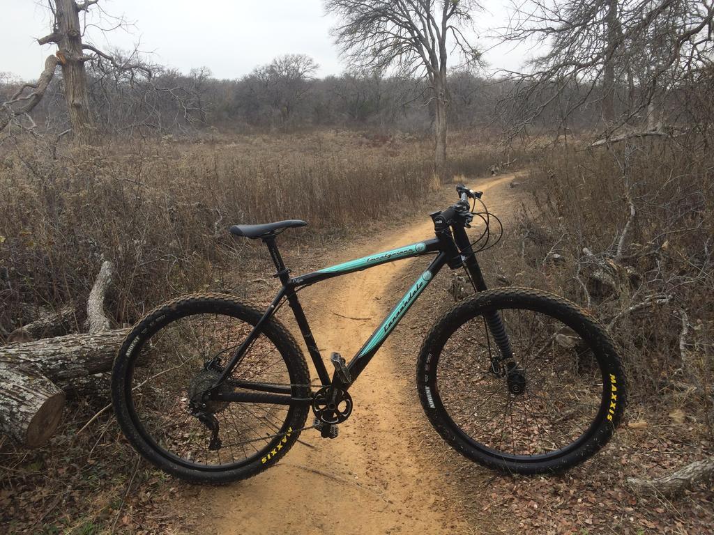 Post your F and Caffeine series bike-image2.jpg