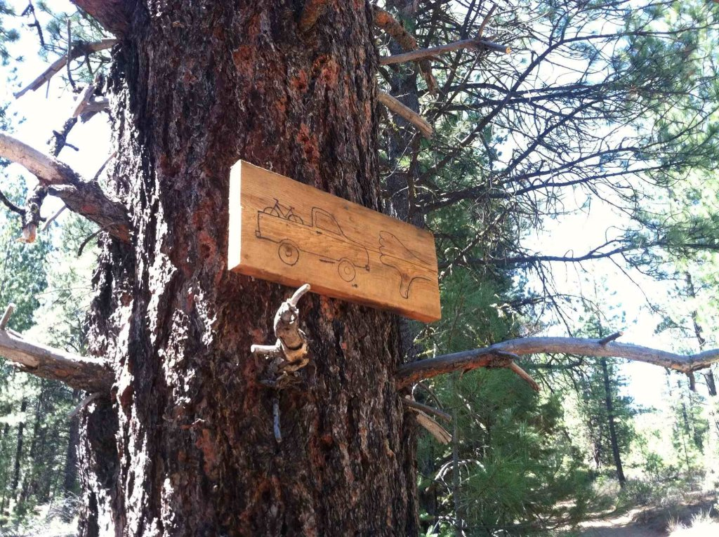 Bend Area Trail Conditions & Blow Down Thread for 2013-imageuploadedbytapatalk-hd1367811361.409223.jpg