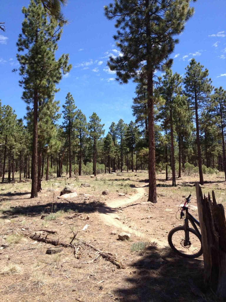 Ricochet Trail - Flagstaff-imageuploadedbytapatalk-hd1372047079.565228.jpg