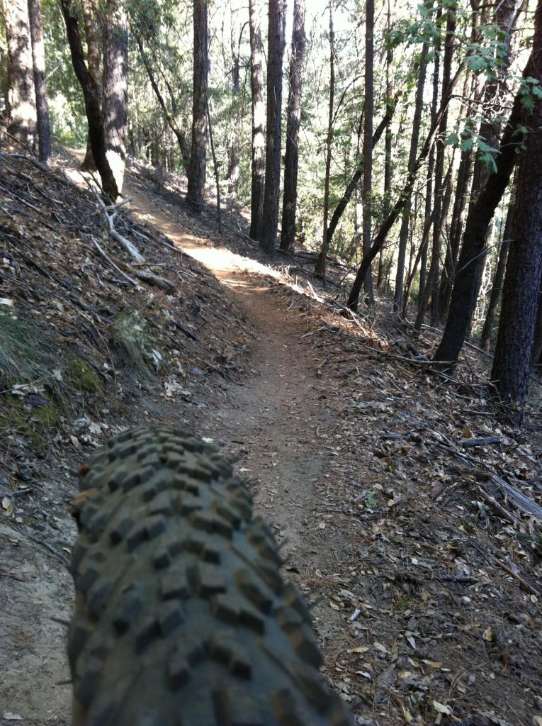 """Live from the trail"" photo thread-imageuploadedbytapatalk1316018477.429702.jpg"