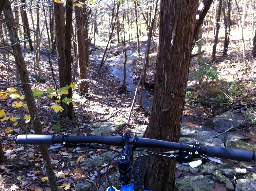 Are Carbon Bars worth dealing with?-imageuploadedbytapatalk1319385079.863855.jpg