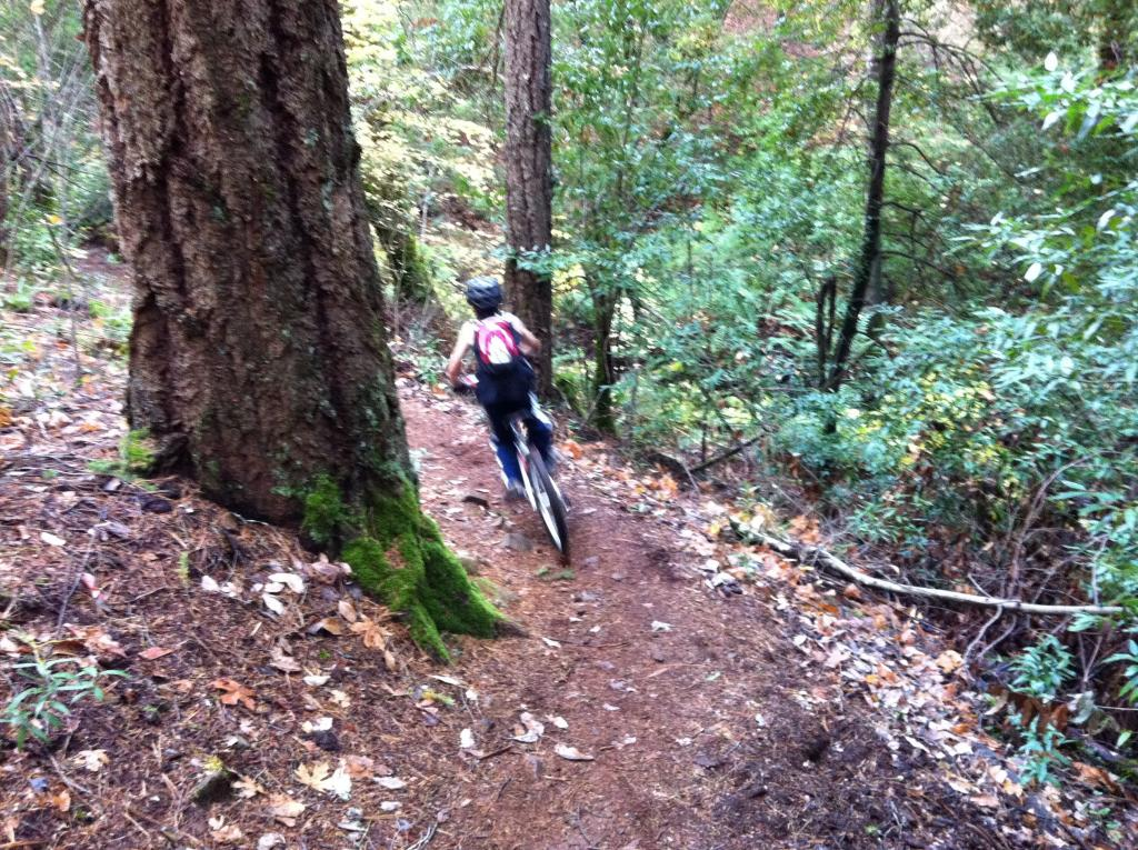 """""""Live from the trail"""" photo thread-imageuploadedbytapatalk1321230566.013515.jpg"""