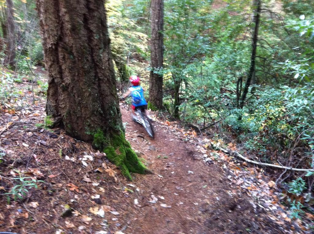 """""""Live from the trail"""" photo thread-imageuploadedbytapatalk1321230608.775514.jpg"""
