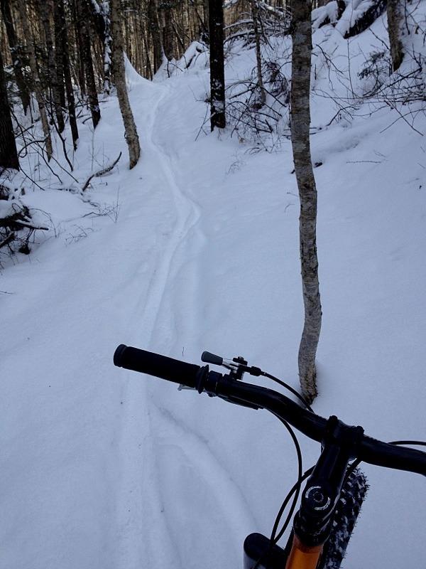 Fatbikes & riding in Vermont-imageuploadedbytapatalk1328567238.927143.jpg