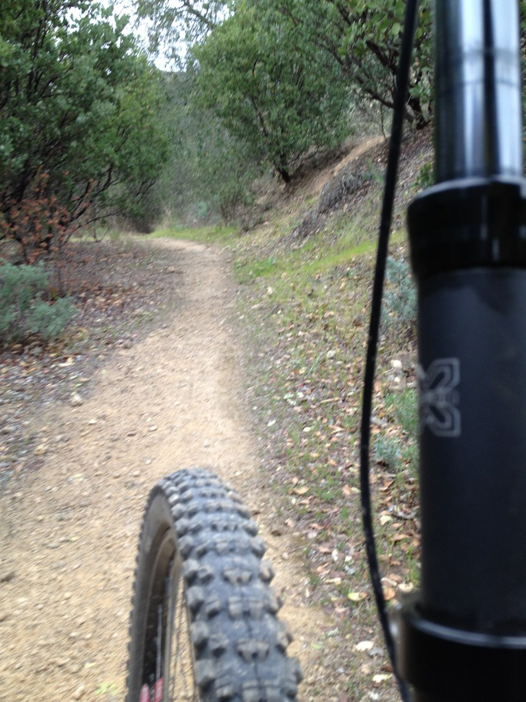 """Live from the trail"" photo thread-imageuploadedbytapatalk1330475517.774591.jpg"