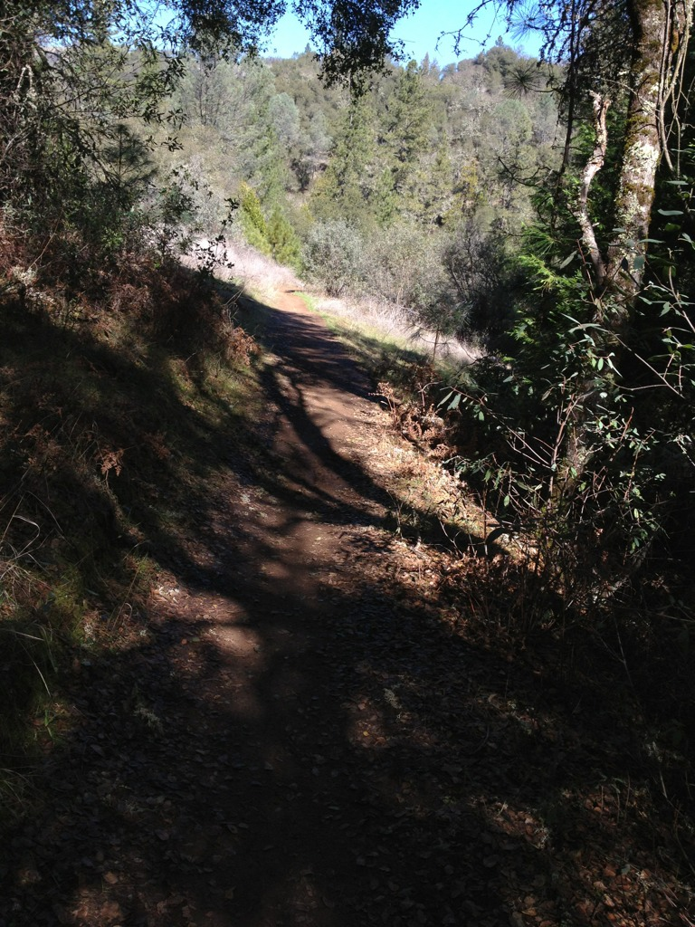 """Live from the trail"" photo thread-imageuploadedbytapatalk1330815505.116830.jpg"