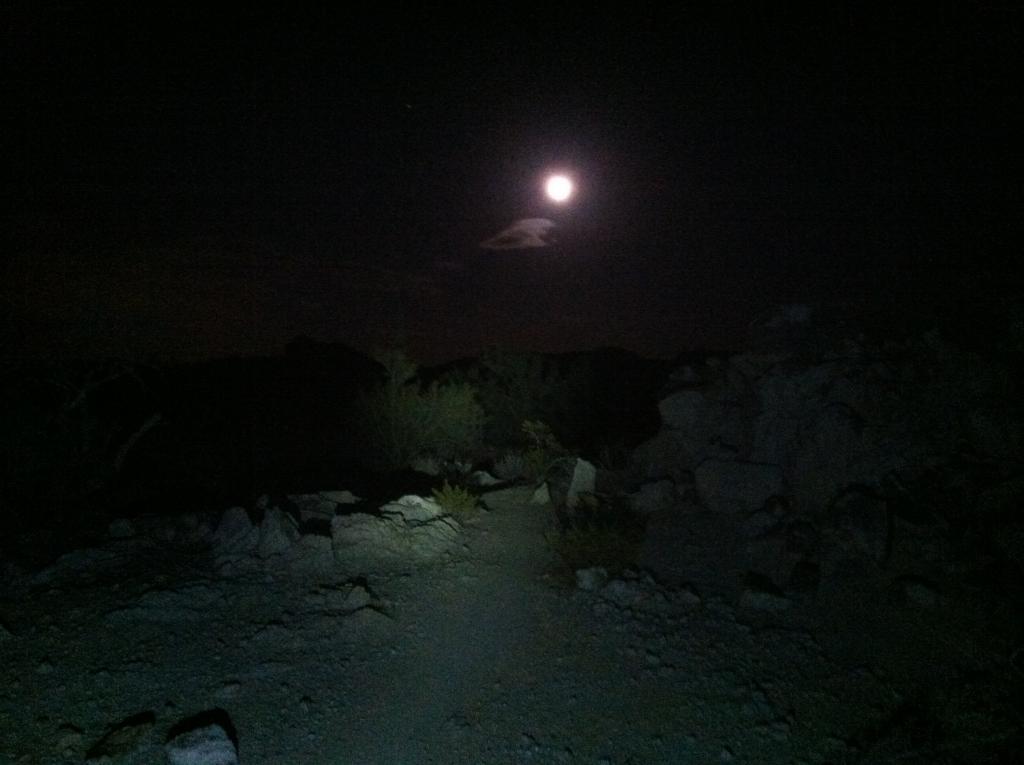 Night Photography - Post your shots!-imageuploadedbytapatalk1331178954.191131.jpg