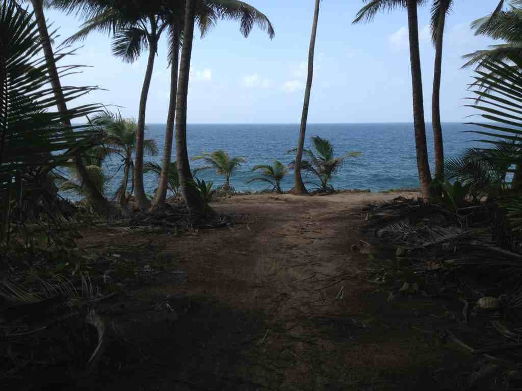 Just came out of Cerro Gordo trail in PR-imageuploadedbytapatalk1332887390.837926.jpg