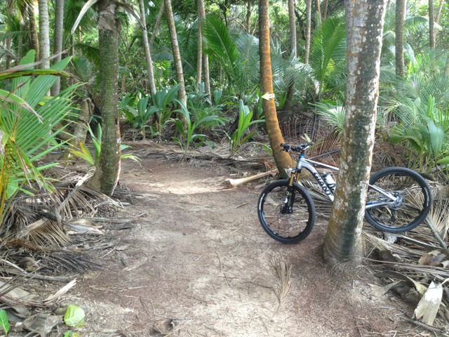 Just came out of Cerro Gordo trail in PR-imageuploadedbytapatalk1335530716.986117.jpg