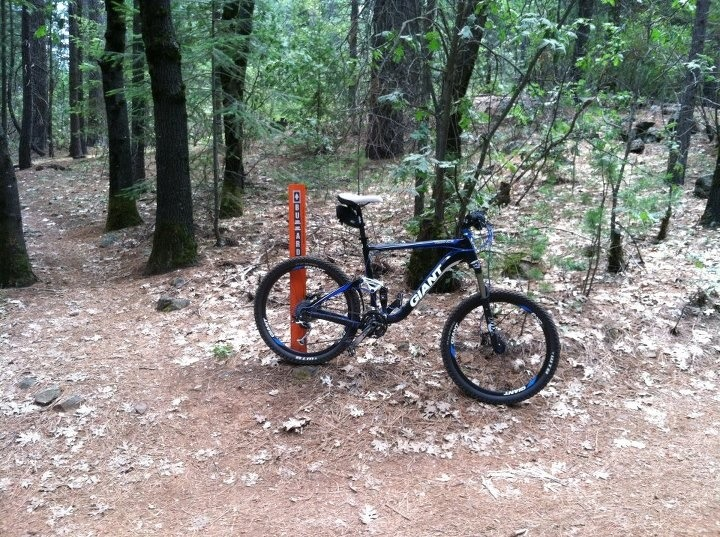 Bike + trail marker pics-imageuploadedbytapatalk1340608208.869233.jpg