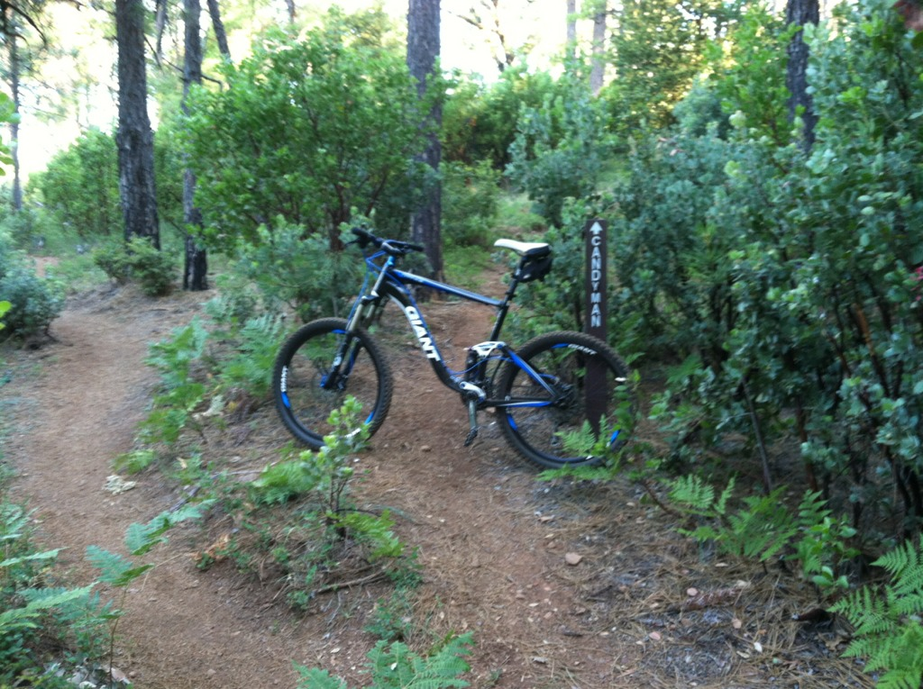 Bike + trail marker pics-imageuploadedbytapatalk1340608231.099020.jpg